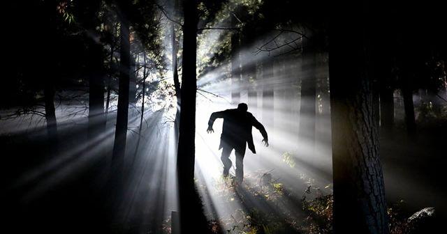 【不思議体験】夜の森で遭難中に出会った亀甲縛りの人