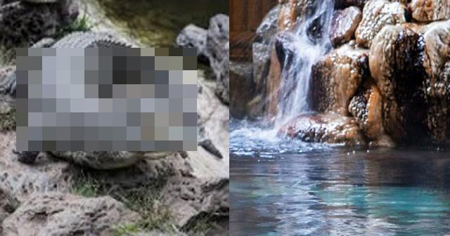 埼玉で「なんでもあり」のやりたい放題の混浴風呂。○○だらけの実態がエグい……