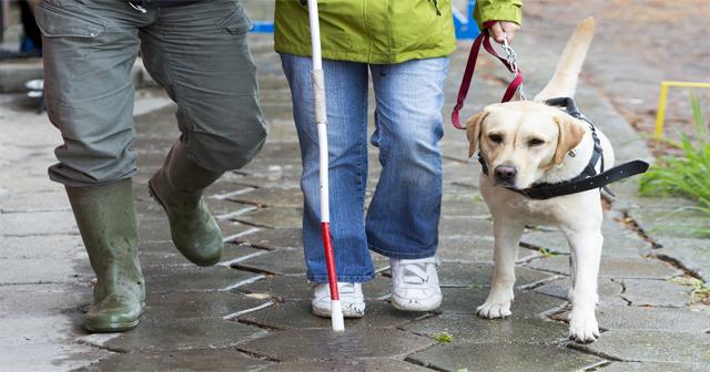 【みんなで考えよう】盲目女性に「うるさい!」知ってほしい白杖で音を出す理由。