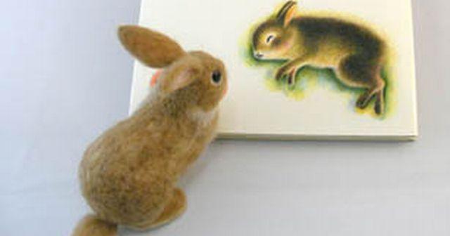 摂取後10分でウサギがタヒ亡するほどの危険な原料を使った食品が普通にスーパーに並んでる日本ってどーよ?