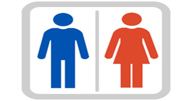 【画像】この男女の欲望の差を図で表した結果wwwwww