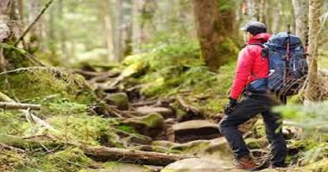 もし登山で遭難しちゃった場合って、一体どうすればいいかわかる?