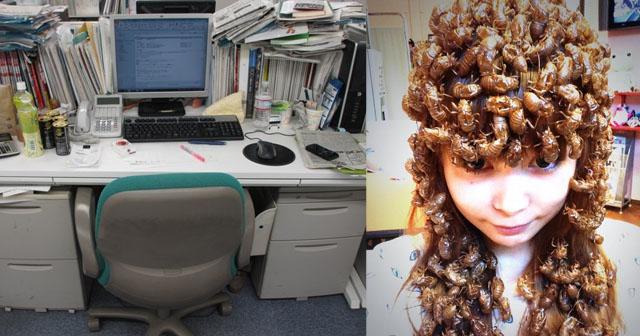 【ビックリ!】出勤して机の上を見たら一面茶色かった。よく見たら全部セミの脱け殻で、数えたら47個もあった。「私はイジメられてるのか…」と思って泣きそうになったが、実は…